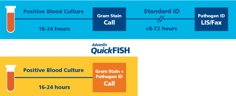 QuickFish infographic - pathogen identification