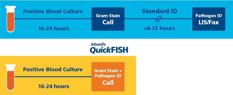 QuickFish infographic - pathogen identification