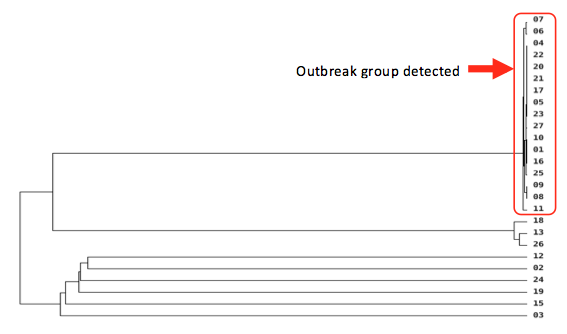 Transmission Investigation Analysis - Genome Sequencing